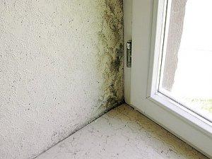 Obr. 1: Plíseň je v okolí napojení okna k ostění je nejčastěji důsledek nesprávné provedené připojovací spáry, která je netěsná a špatně tepelně izoluje.